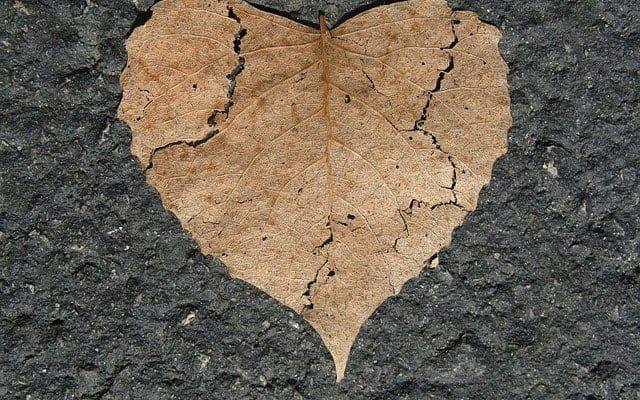 من چرا دل به تو دادم